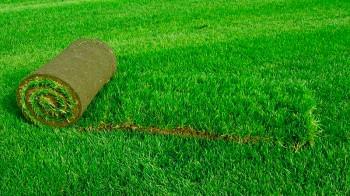 Озеленение мест захоронений